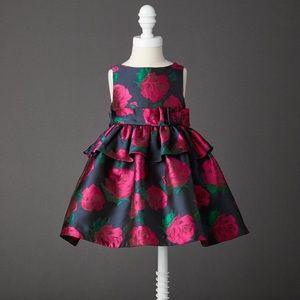 EUC Janie and Jack Rose Peplum Dress